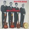 The Trashmen - Surfin' Bird (Hardcore Remix)