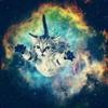 Sikdope & Borgore - Space Kitten Invasion (Code: Pandorum Bootleg) [FREE DOWNLOAD]