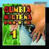 CUMBIA CON LA LUNA EDDIT RMX DJ WILFREDOXOLO LOS TIGRILLOS CUMBIA NORTEÑA MIX