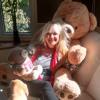 I Think I'll Buy A Teddy Bear