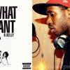 Lady Gaga F R Kelly - Do What You Want (JayNoteZ & Tony Zams Remix Acapella Cover)