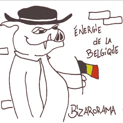 énergie de la Belgique