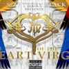 Terry Black feat. S-Z - See What i see( produced. by s-z lundy)
