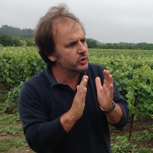 IDTT Wine 210: Jerome Prevost