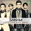 Sanam - Tujhse Naraz Nahi Zindagi