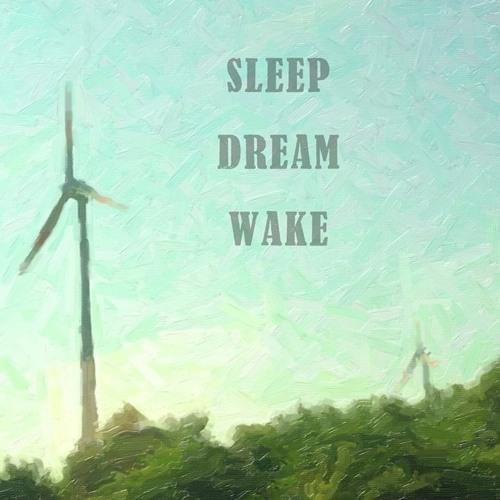 sleepdreamwake
