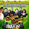 Mis Sentimientos-Los Angeles Azules Ft Ximena Sariñana Mix Dj Bakin