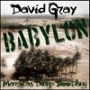 David Gray - Babylon (Maracas Deep Bootleg)