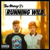 Too Many T's - Running Wild (Featurecast Drum And Bass Remix)