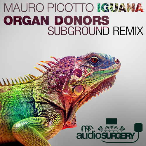 Mauro Picotto - Iguana - Organ Donors Subground remix OUT NOW