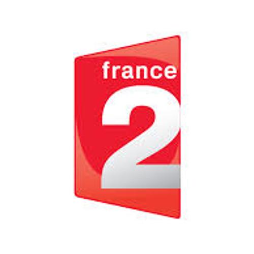 Narration / ADN France 2 Robots Cafard(extraits) / Emission TV