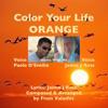 Color Your Life, Orange (Dance With Me) - Fivos Valachis, feat. Paolo D'Emilio, Jaime J Ross
