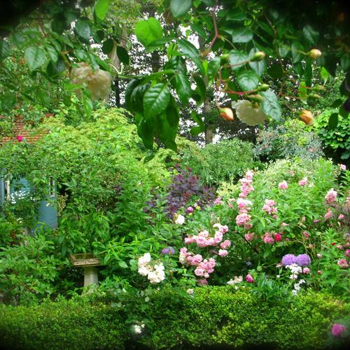 Christopher Groove - Secret Garden teaser!  OFFLINE 001