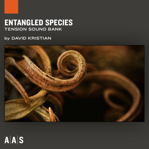 AAS Entangled Species
