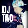 INTRO + PERREO FUERTE   DJ TAO 2014