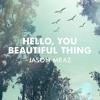 Hello, You Beautiful Thing - Jason Mraz (Cover)