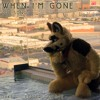 When Im Gone (cup song)