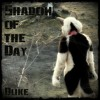 Shadow of The Day