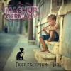 Mashup-Germany - Deep Exception - Vol. 2