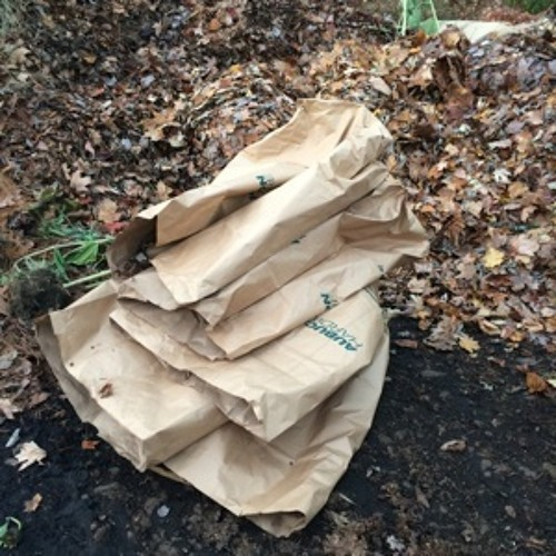 TDYR - 179 - Leaf Bags And Our Disposable Society
