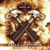 Kali & Lifeforms - Crash & Burn EP Minimix [Digital Om Production]