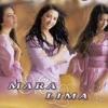HERÓI SEM MEDALHA - Mara Lima