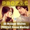 Ek Mulaqat Bitches (PROZAC House Mashup / Remix)
