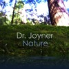 3. The Cave, Part 1 (free download of entire album at www.drjoyner.net)