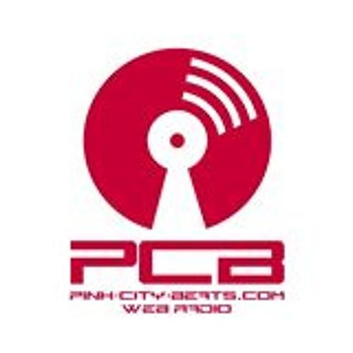 PCB WEB RADIO MIX By FRITZ DK