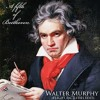 A Fifth Of Beethoven Walter Murphy