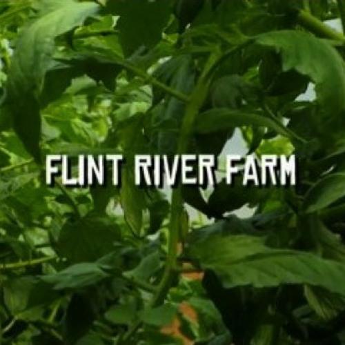Flint River Farm - film score