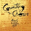 Mr. Jones: Live - Counting Crows [Remix]