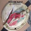 IOAKIM SAYZ -  EXTRAVAGANZA  (MAHER DANIEL HOUSE TO HOUSE MIX)