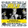 Pollo - Namastê, Salamaleico (ASS CREAM PARTY Remix)[Click Buy to Free Download]