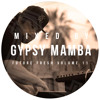 Future Fresh Vol. 11 - Gypsy Mamba