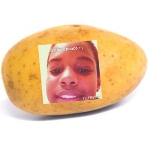A Potato Flew Around My Room (Harryredz Remix)