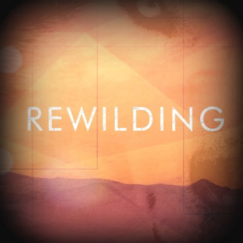 Rewilding Part 1