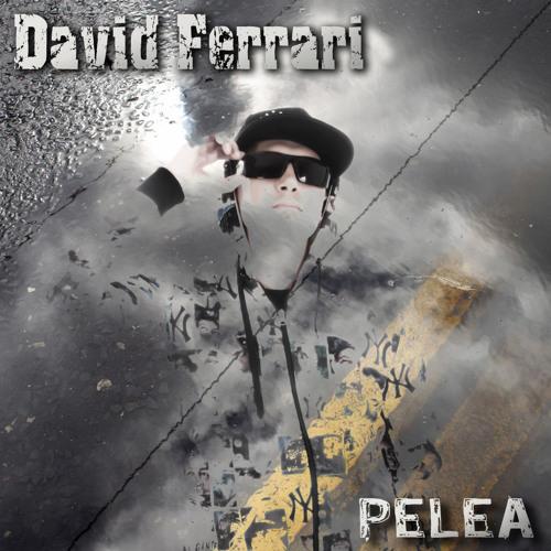 David Ferrari - Pelea