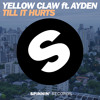 poster of Yellow Claw Ft Ayden Till It Hurts song