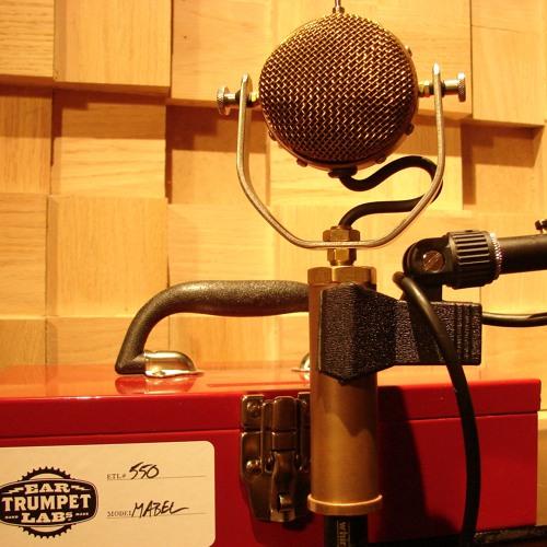 Ear Trumpet Labs Mabel Mic on vox/gtr