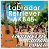 AKB48 - Labrador Retriever (Fingerstyle Guitar Cover)