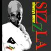 Download Sizzla - Always Near [Roots Rock International 2014] Mp3