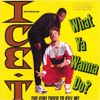 Ice T - What Ya Wanna Do (Instrumental)