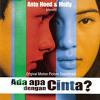 Ada Apa Dengan Cinta (OST AADC)  - Bimbang (mely goeslaw Cover Instrument)
