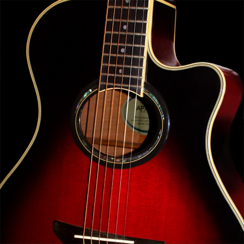 RSGL04 V6 Steel String Acoustic Guitar