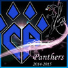 Cheer Athletics Panthers 2014-2015