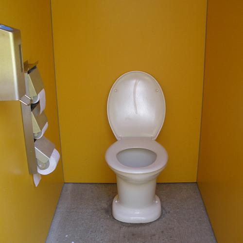Ready Aim Wee - Toilet Training for Boys