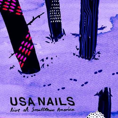 USA Nails - Live At Smalltown America