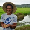 Filipino farmers bounce back and build resilient livelihoods