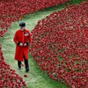 Requiem For A Soldier - Stephanie Long (Coombes)